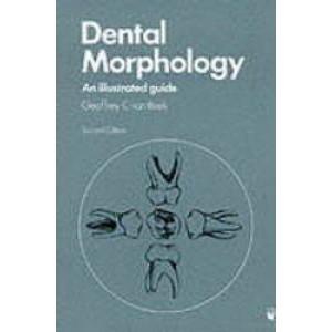 Dental Morphology